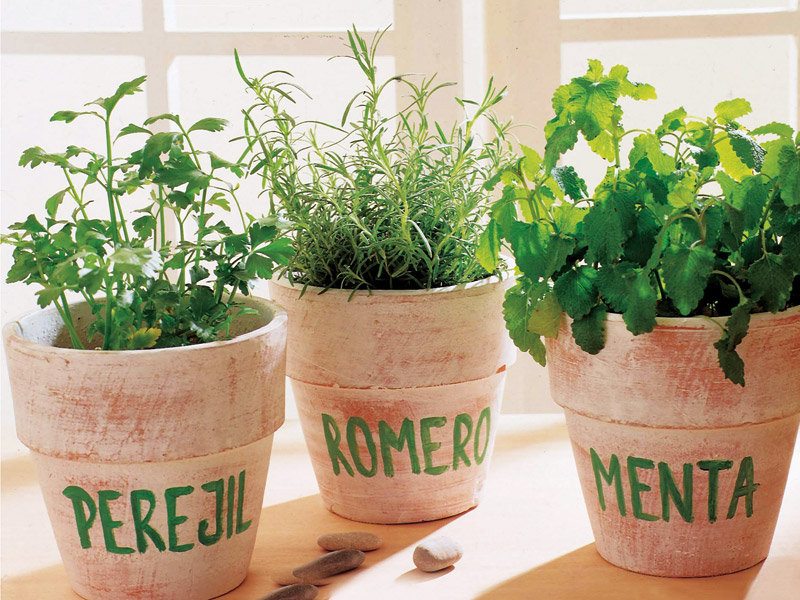 1.Grow herbs and spices