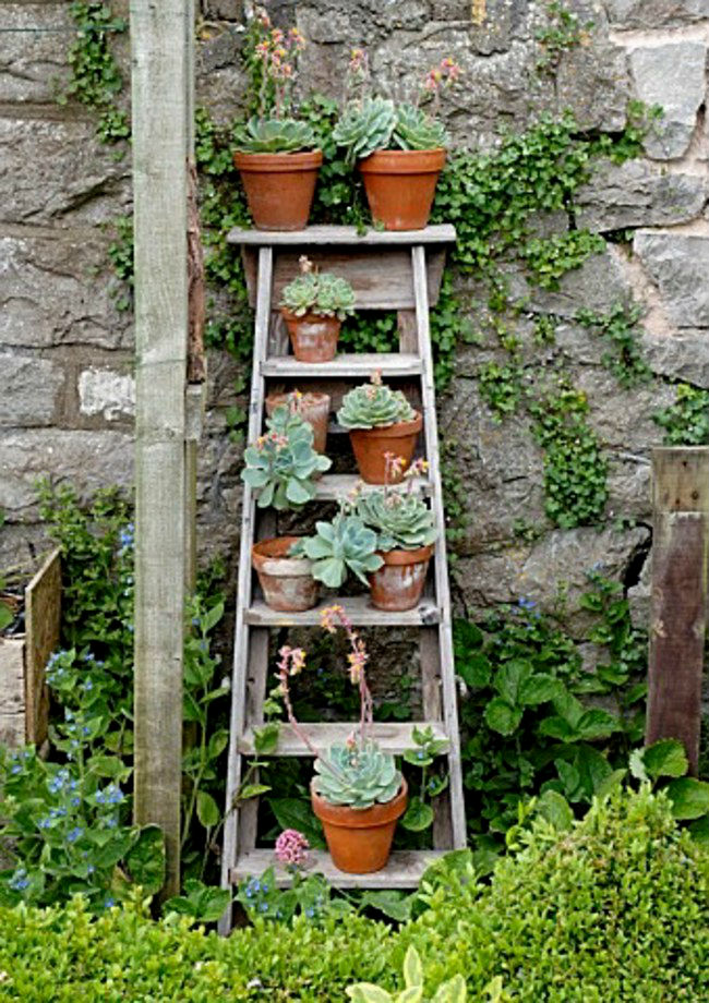 space-saving-garden-hacks-for-small-spaces-that-are-charming-and-inventive-07