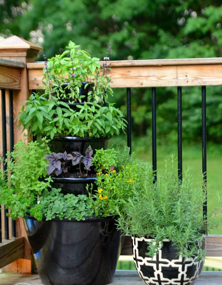 space-saving-garden-hacks-for-small-spaces-that-are-charming-and-inventive-10