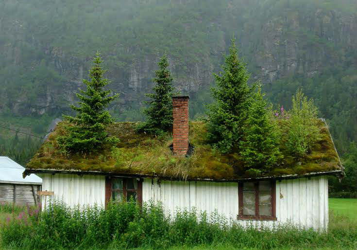 amazing-fairytale-grass-roofs-of-scandinavia-08