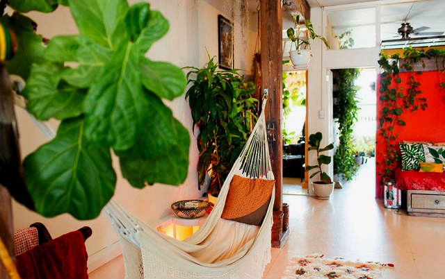 a-girl-with-a-green-thumb-500-plants-in-one-apartment-07