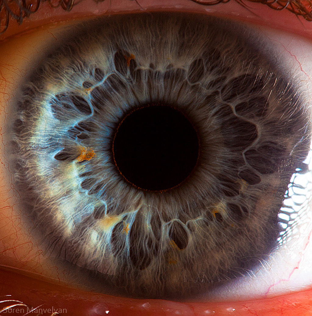 extreme-closeups-of-human-eyes-are-creepy-but-stunning-01