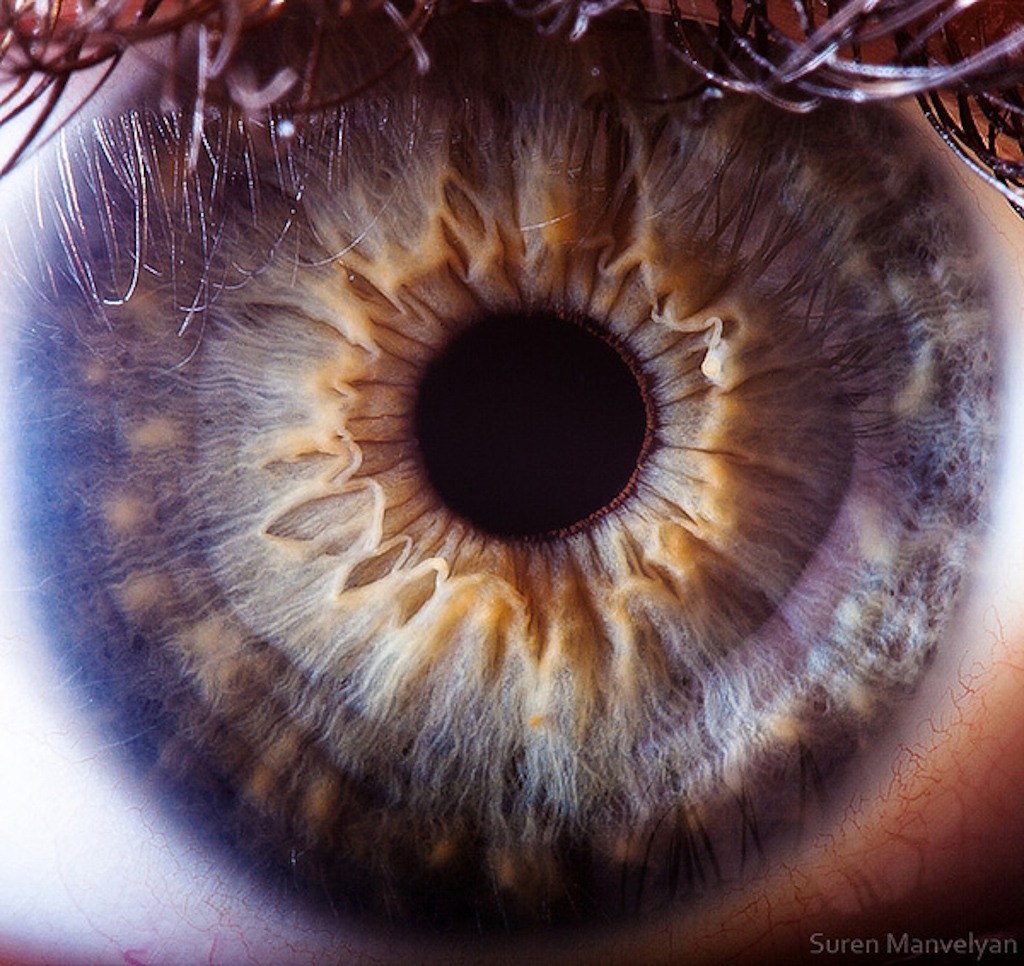 extreme-closeups-of-human-eyes-are-creepy-but-stunning-02