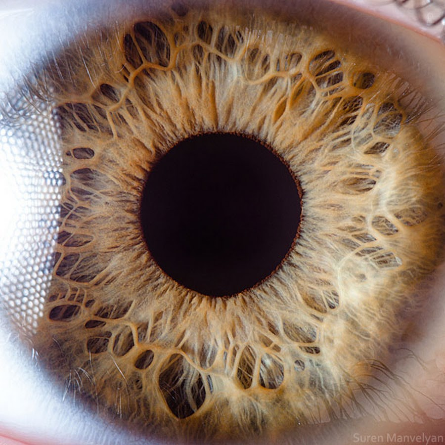 extreme-closeups-of-human-eyes-are-creepy-but-stunning-03