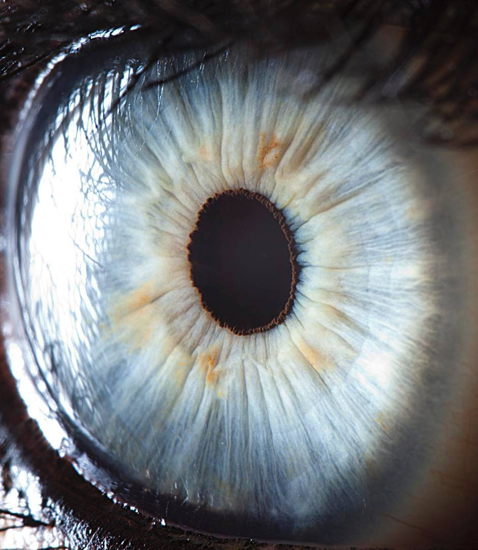 extreme-closeups-of-human-eyes-are-creepy-but-stunning-04
