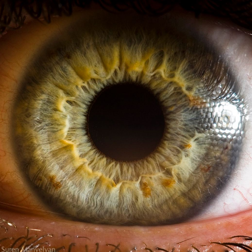 extreme-closeups-of-human-eyes-are-creepy-but-stunning-06