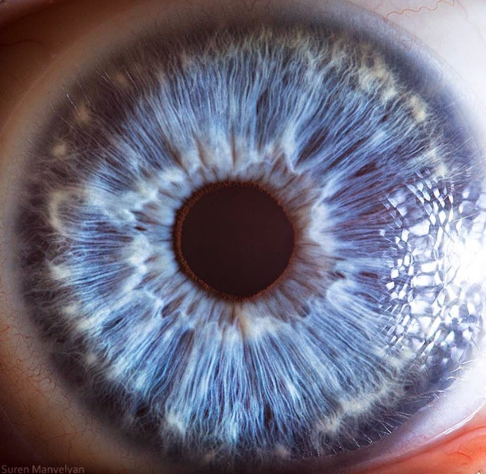 extreme-closeups-of-human-eyes-are-creepy-but-stunning-08