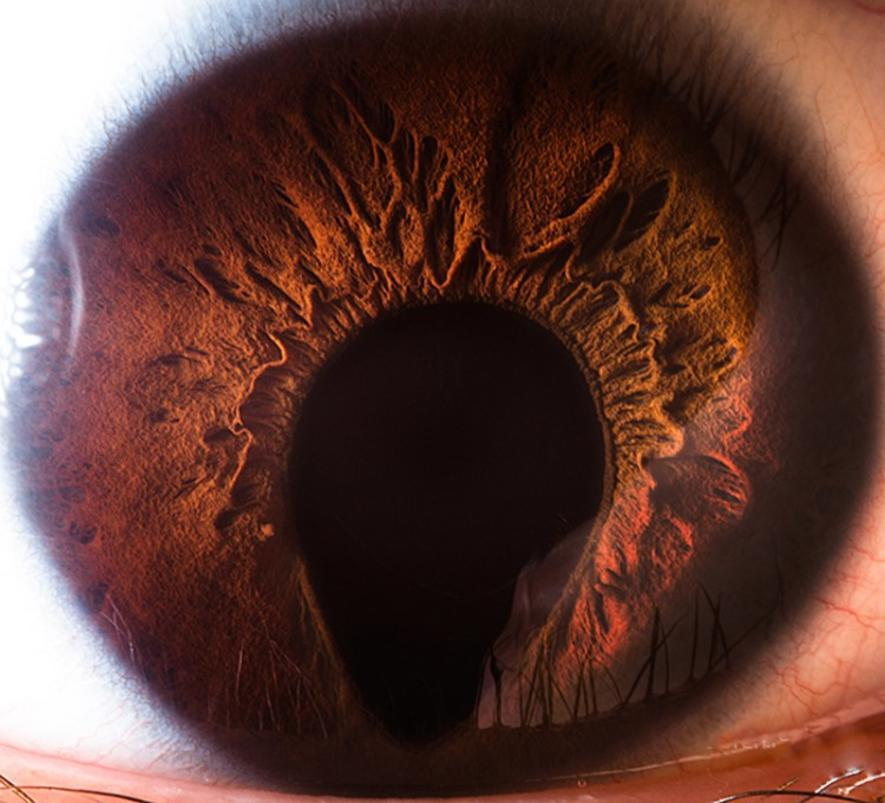 extreme-closeups-of-human-eyes-are-creepy-but-stunning-09