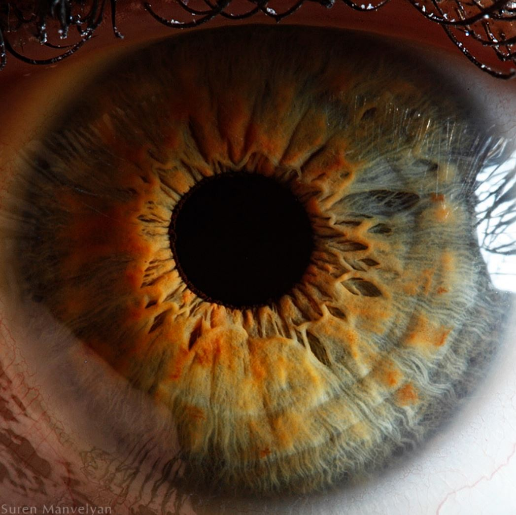extreme-closeups-of-human-eyes-are-creepy-but-stunning-10