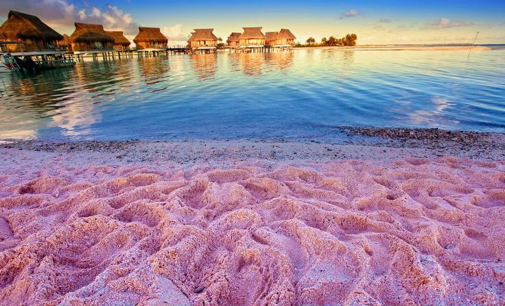 8 Amazing Places to Find Pink Sand Beaches   Her Beauty ... - photo#42