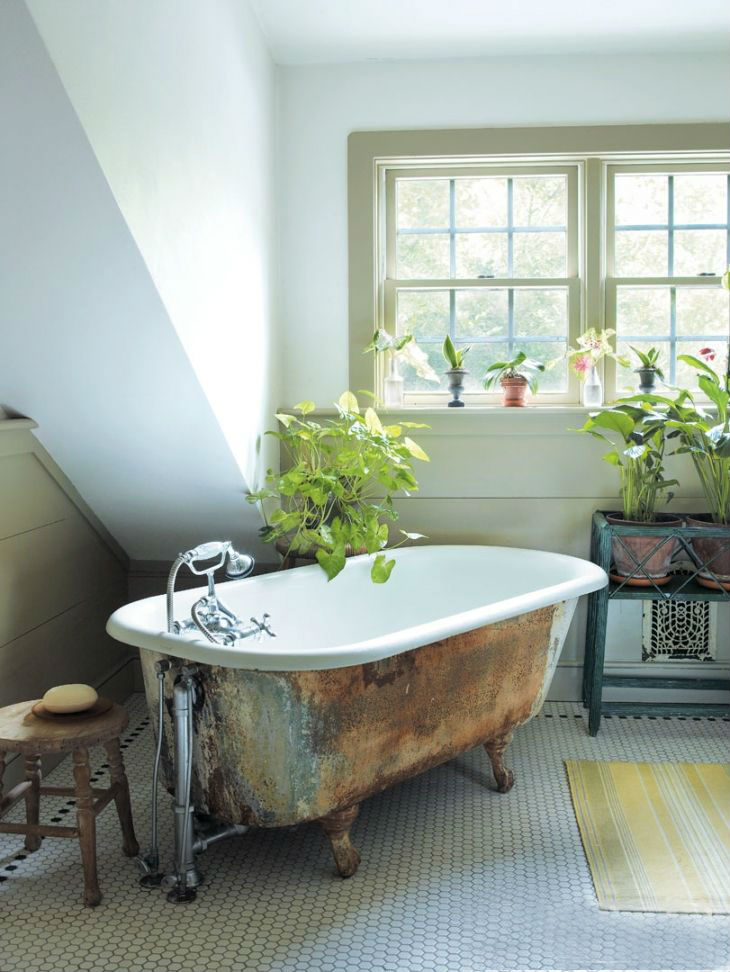 weu0027re keeping it going with the plant theme this time with wooden floors and a black clawfoot tub a black tub does sound pretty weird but a white inside