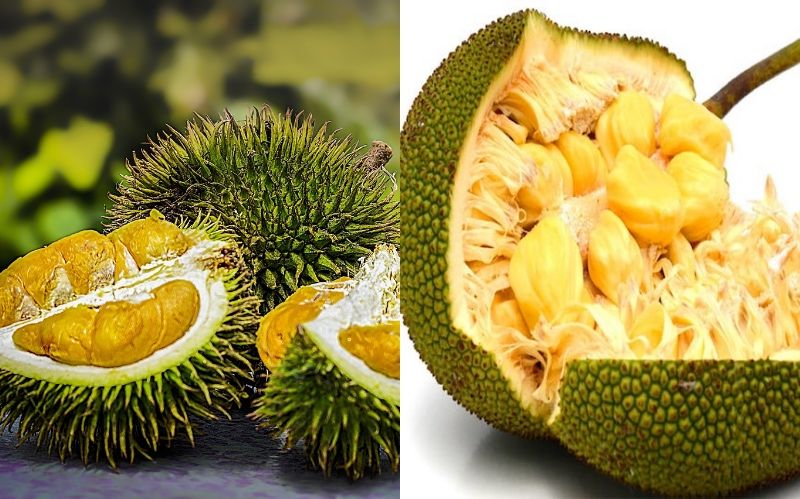 Peeling and cleaning a raw jackfruit  | 9 Facts You Need To Know About The Lip-Smacking Jackfruit | Her Beauty