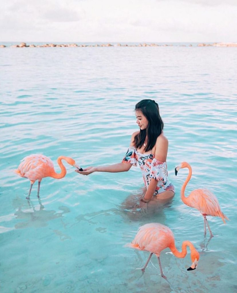 Аруба | Travel-девичники и экспедиции в самые яркие уголки нашей планеты | Her Beauty
