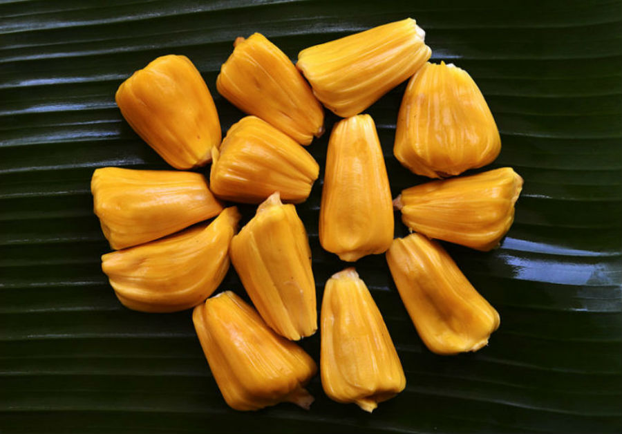 Jackfruit is a real nutritional wonder   | 9 Facts You Need To Know About The Lip-Smacking Jackfruit | Her Beauty