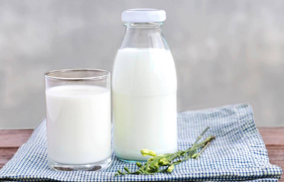 Milk, or alternative substitute  | 10 Things You Should Always Have In Your Fridge | Her Beauty