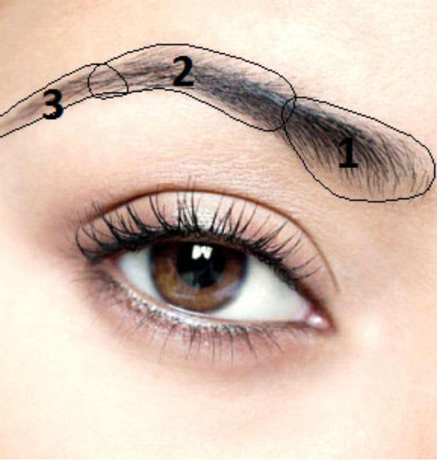 Нанесите на брови воск   Как красить брови, чтобы они выглядели естественно   Her Beauty