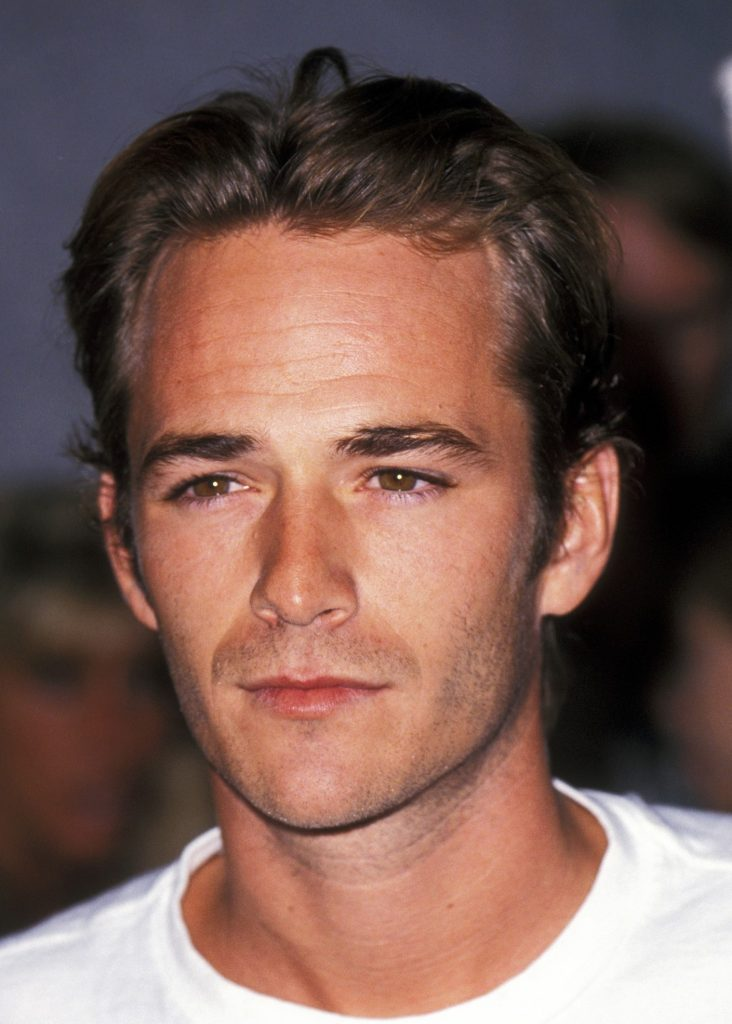 Dylan McKay | Beverly Hills 90210 Actors Then and Now | Her Beauty