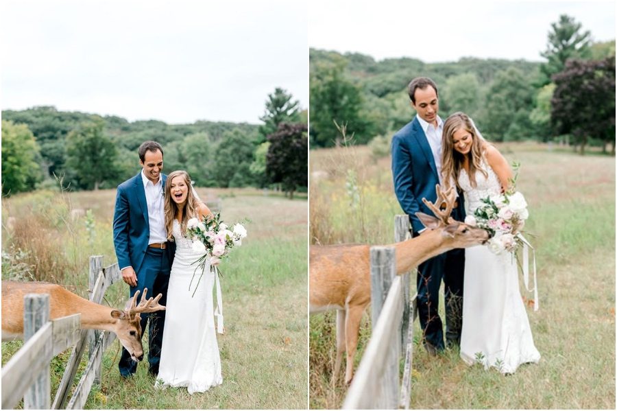 A Wedding Photoshoot To Remember Gets Interrupted By A Deer #1 | Her Beauty