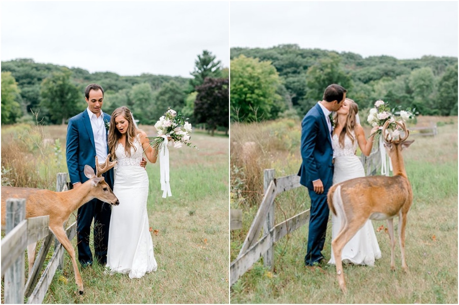A Wedding Photoshoot To Remember Gets Interrupted By A Deer #3 | Her Beauty