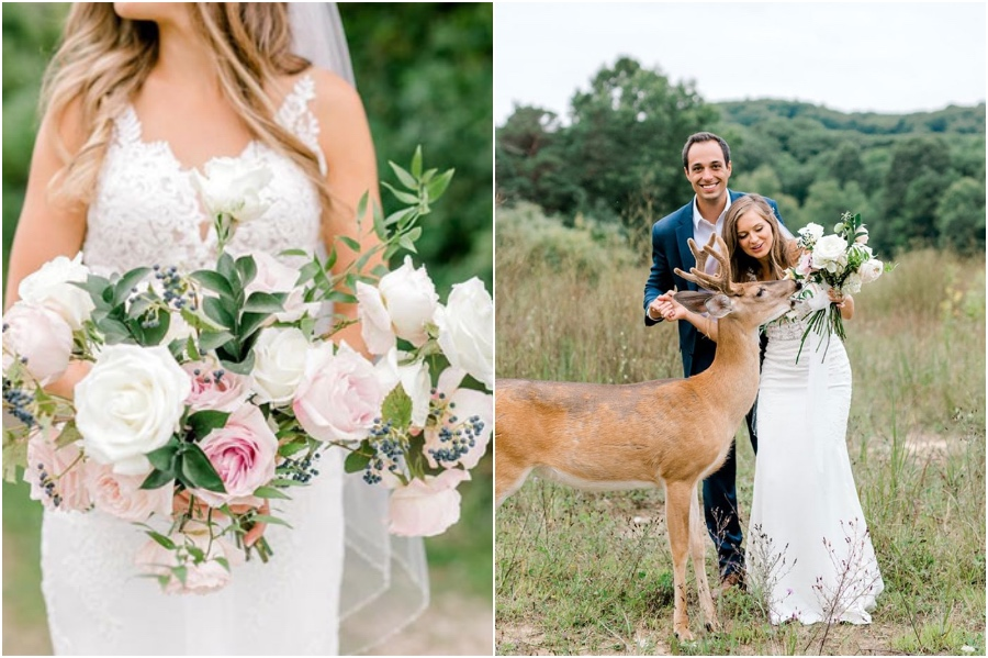 A Wedding Photoshoot To Remember Gets Interrupted By A Deer #6 | Her Beauty