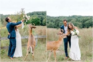 A Wedding Photoshoot To Remember Gets Interrupted By A Deer | Her Beauty