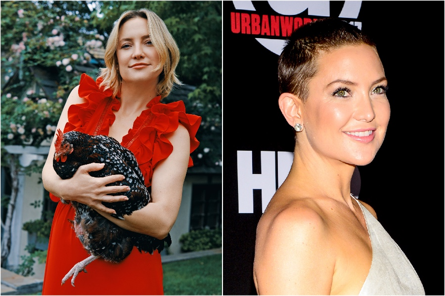 Kate Hudson | 15 Stars That Shaved Their Head And Rocked It | Her Beauty