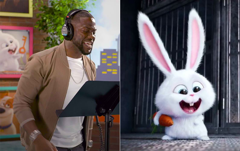 He was a voice-over for Snowball in Secret Life Of Pets franchise | 15 Kevin Hart Facts That Will Surprise You | Her Beauty