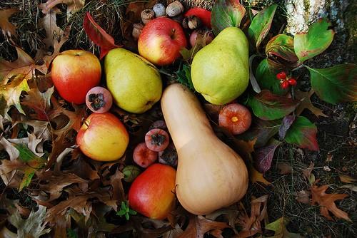 Осенние фрукты | Что есть осенью: 7 полезных сезонных продуктов | Her Beauty
