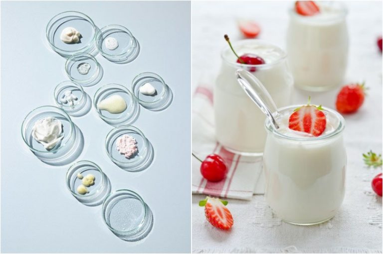All You Need To Know About Probiotics | Her Beauty