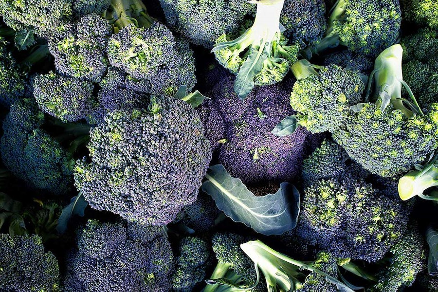 Broccoli | 10 Foods With Almost Zero Calories | Her Beauty