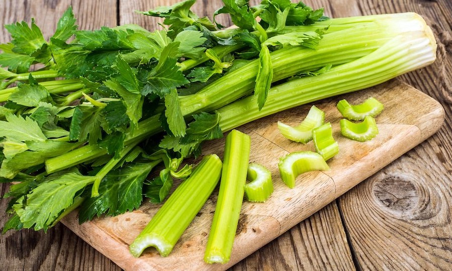 Celery | 10 Foods With Almost Zero Calories | Her Beauty
