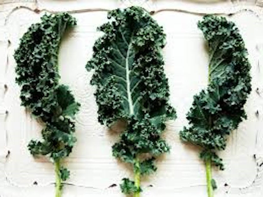Kale | 10 Foods With Almost Zero Calories | Her Beauty