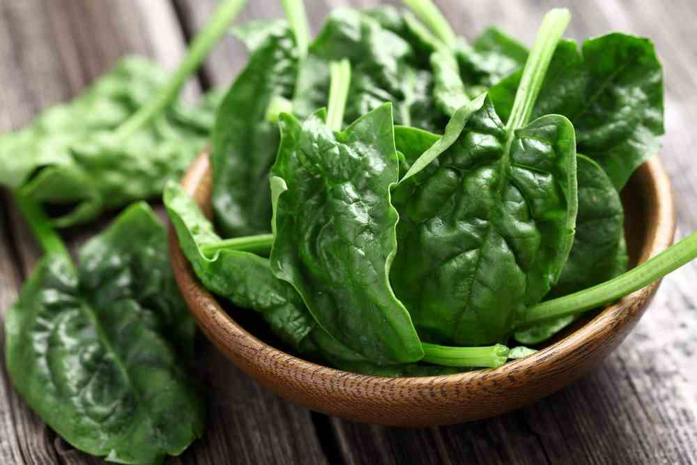 Spinach | 10 Foods That Treat Skin Conditions | Her Beauty