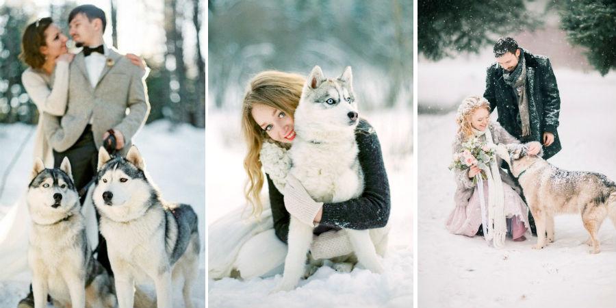 Хаски | 8 крутых идей для зимней свадьбы | Her Beauty