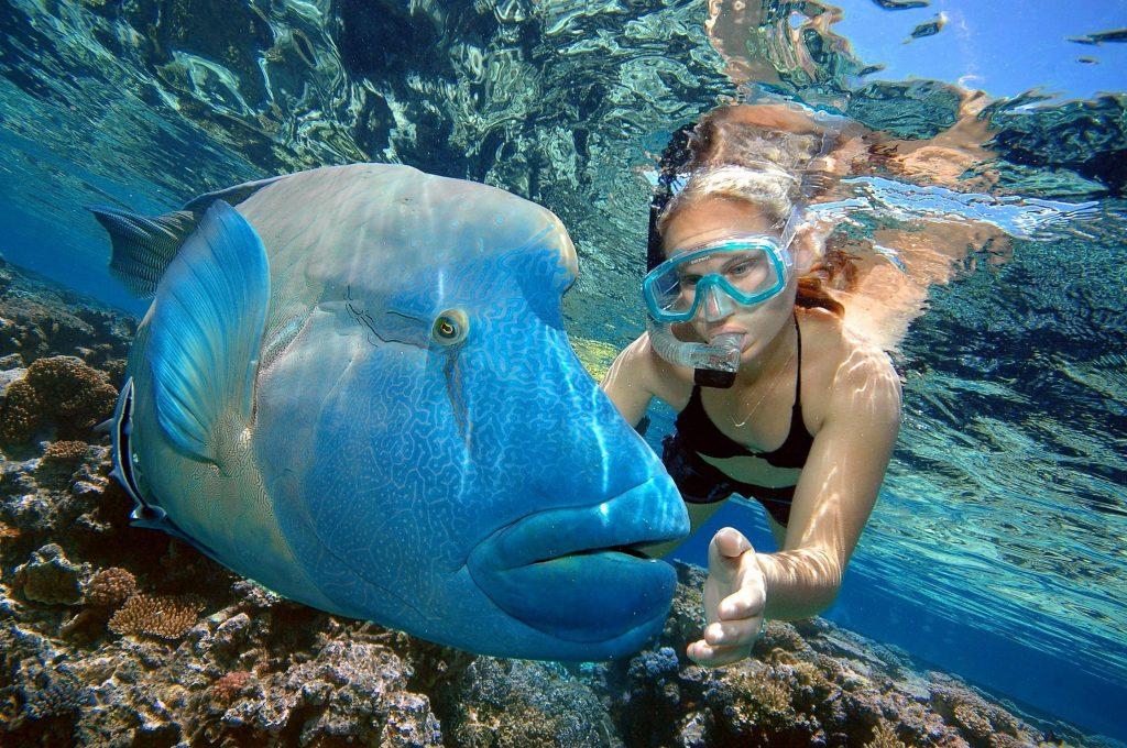 Коралловое море | Топ-10 самых красивых морей в мире | Her Beauty