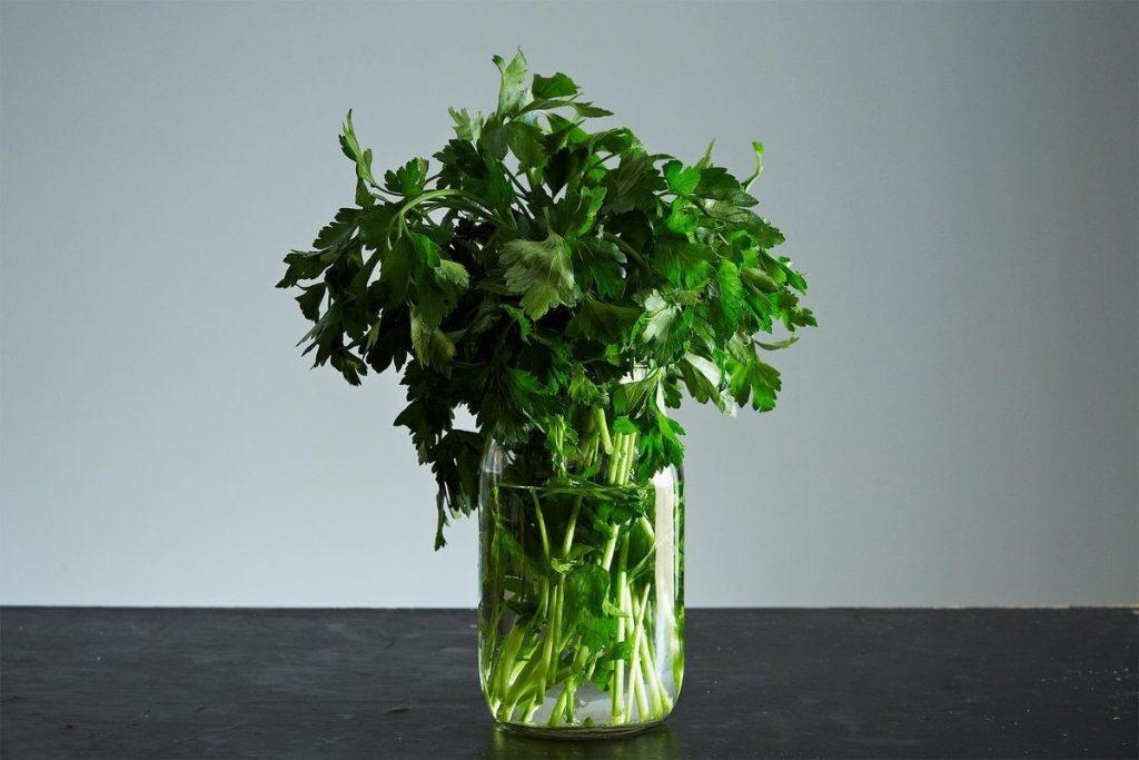 Зелень | 8 хитрых уловок, помогающих увеличить срок годности продуктов | Her Beauty