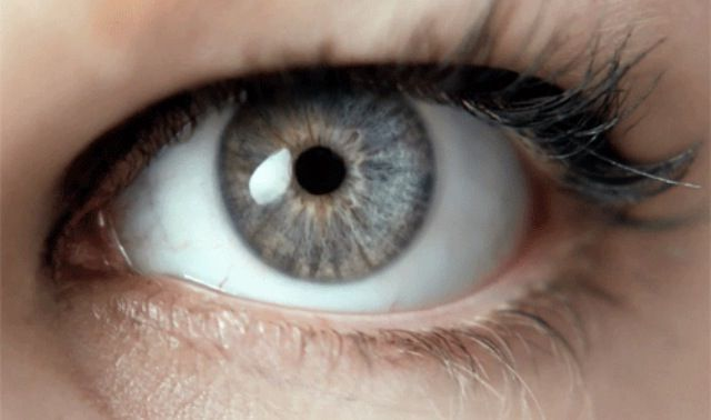 This image has an empty alt attribute; its file name is The-Truth-About-Gray-Eyes-6.jpg