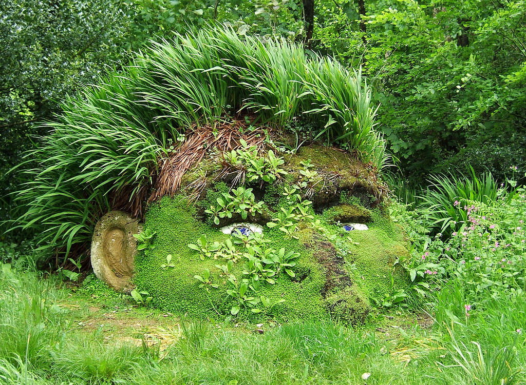 Extraordinary Beauty of The Lost Gardens of Heligan | Her Beauty