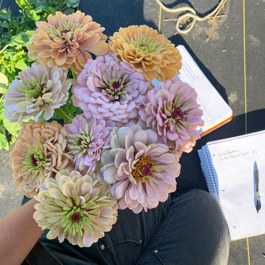 This Unreal Flower Farm Makes The Most Gorgeous Floral Arrangements #10 | Her Beauty