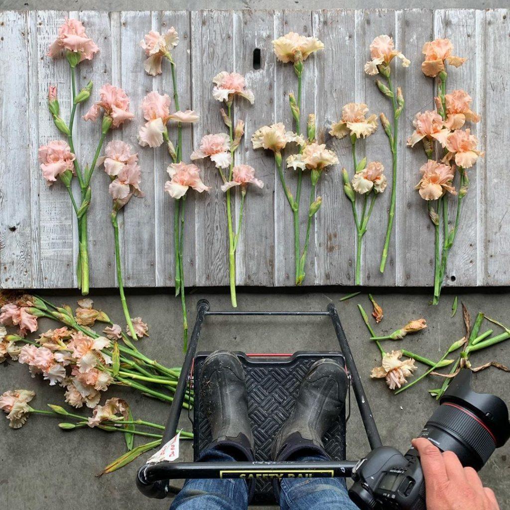 This Unreal Flower Farm Makes The Most Gorgeous Floral Arrangements #3 | Her Beauty