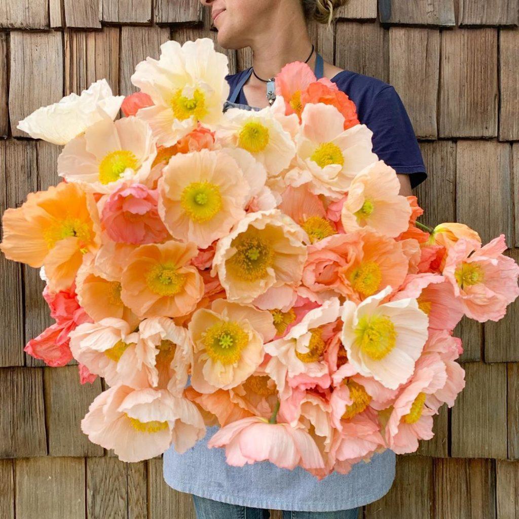 This Unreal Flower Farm Makes The Most Gorgeous Floral Arrangements #6 | Her Beauty