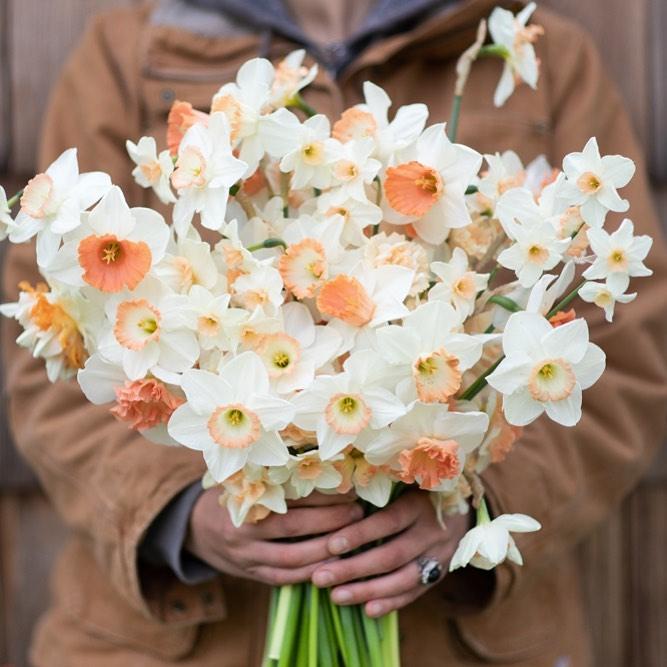 This Unreal Flower Farm Makes The Most Gorgeous Floral Arrangements #8 | Her Beauty