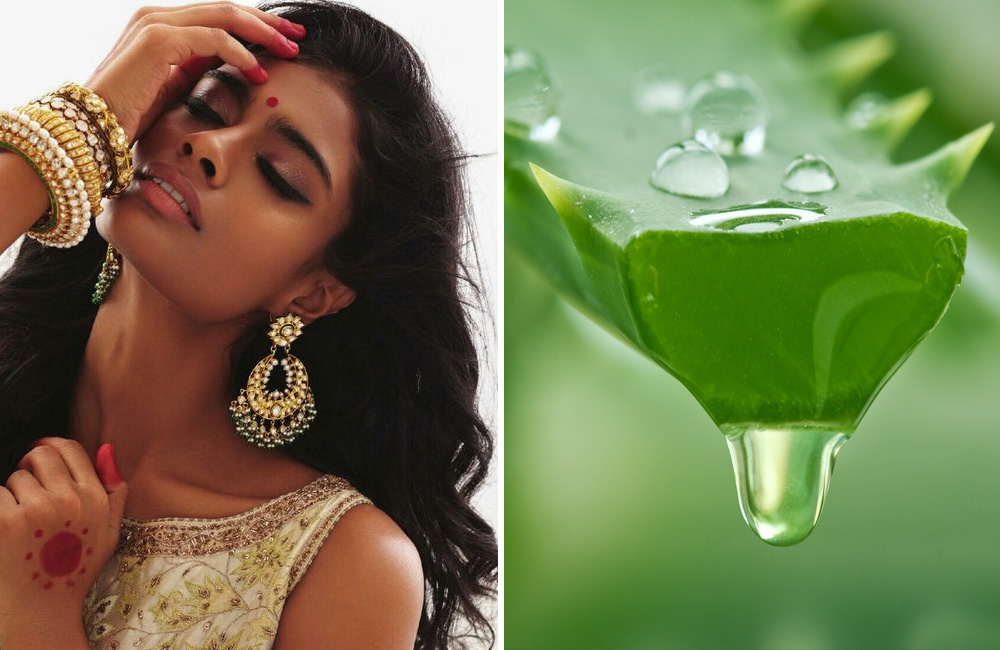 Aloe | Secrets of Indian Women: 8 Herbs You Should Use for Gorgeous Hair | Her Beauty