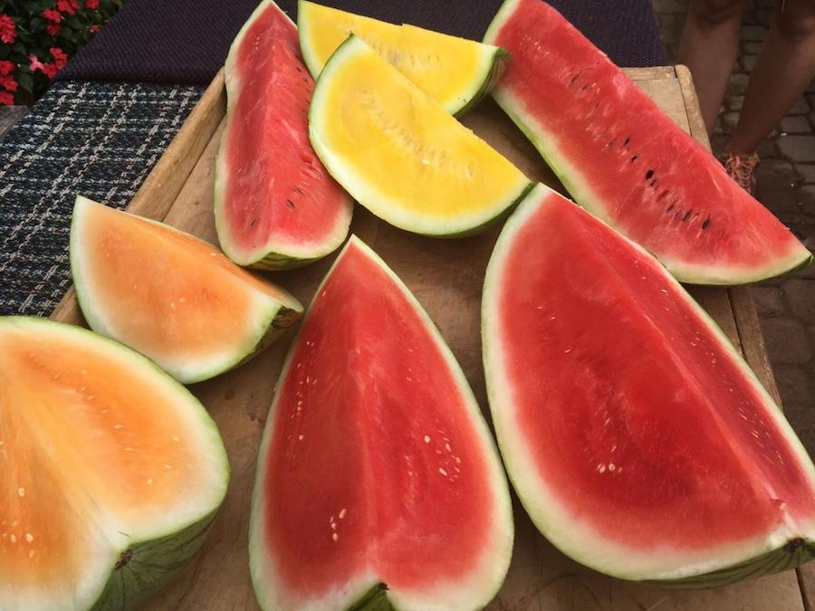 3. There Are Many Kinds   8 Watermelon Facts You Never Knew   Her Beauty