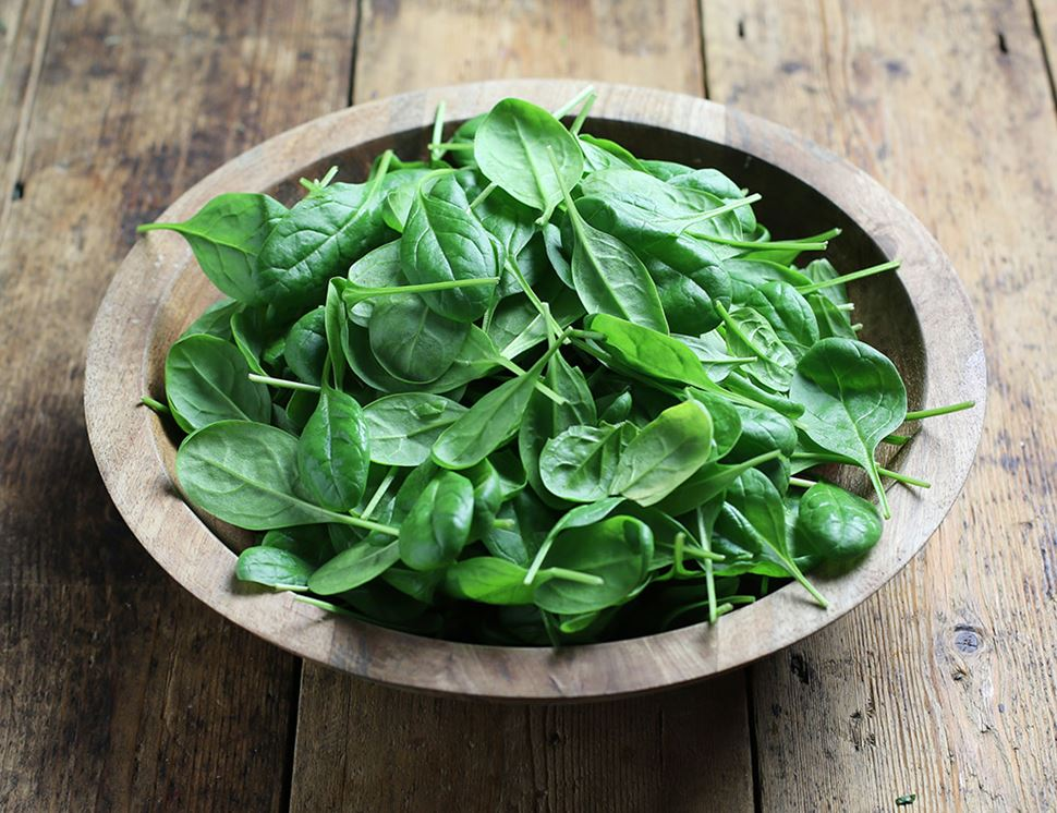 Spinach   10 Superfoods That Will Help You Lose Weight   Her Beauty